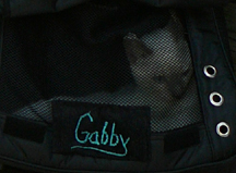 Gabby in bag
